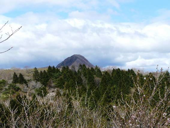 明神ヶ岳からみた金時山